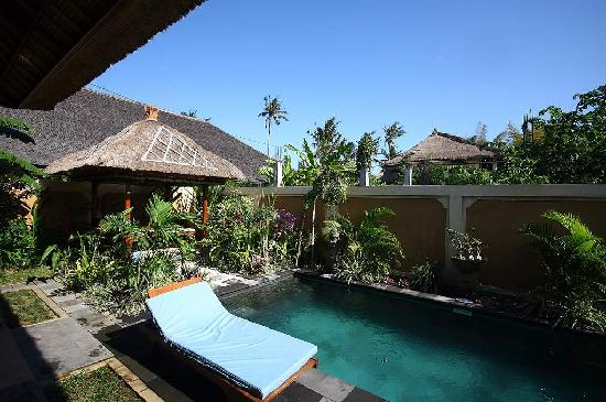 Tirtarum Villas, Canggu Bali: Private pool