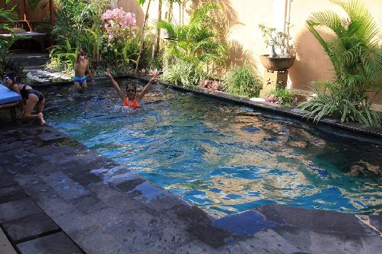 Tirtarum Villas, Canggu Bali: My kids swim in the pool