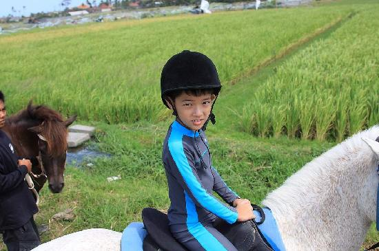 Tirtarum Villas, Canggu Bali: Horse riding at rice-field