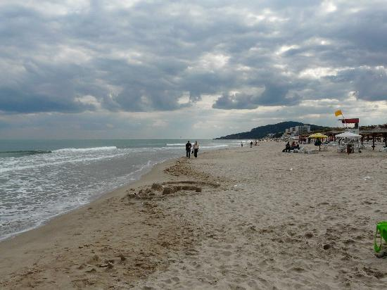 Hotel Orchidea: La plage d'Albena