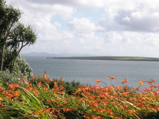 Torann Na Dtonn: View of the garden