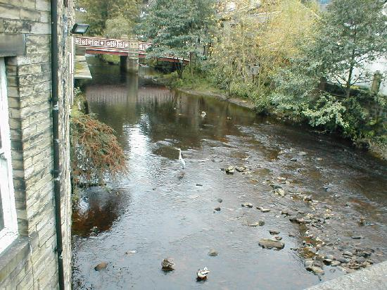 Look closely and you should see a heron standiing in the water at Hebden Bridge
