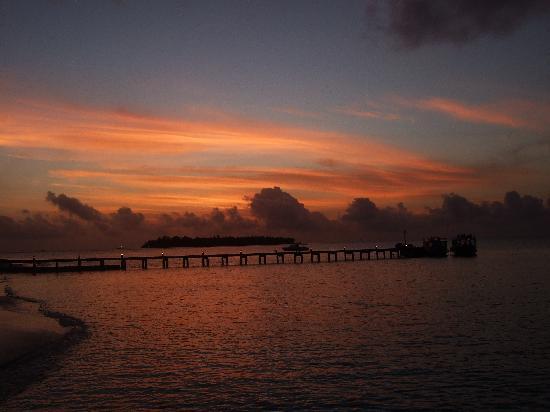 Cocoa Island by COMO: end of dolphin cruise