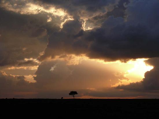 Kicheche Mara Camp: Sonnenuntergang in der Masai Mara
