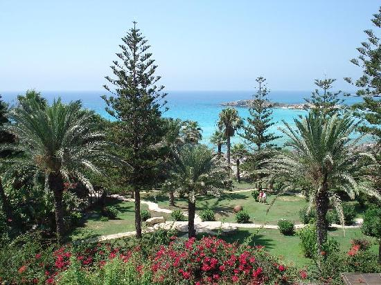 Nissi Beach Resort: View from room 311