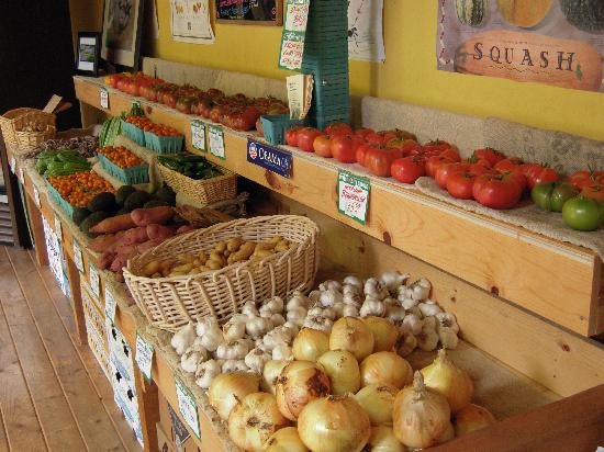 Barking Dog Farm: glorious produce