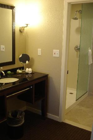 HYATT house Sterling/Dulles Airport-North: Vanity & bath area