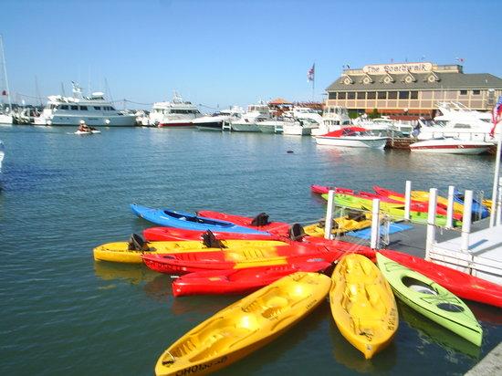 Kayak the Bay: the harbor