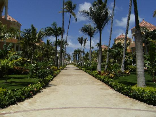 Luxury Bahia Principe Ambar Don Pablo Collection: Sentier qui mène à la piscine