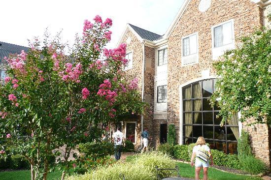 Staybridge Suites Dallas-Las Colinas Area : Looking back at the hotel