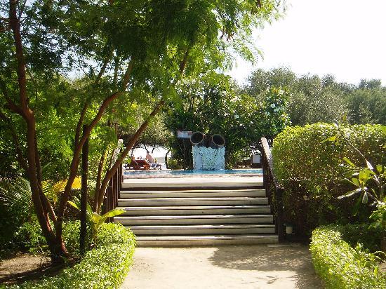 Cinnamon Dhonveli Maldives : Pool