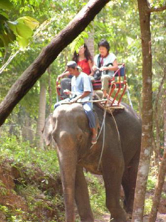 Ko Samui, Thailand: Trekking
