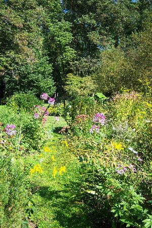 The Pennsbury Inn: Late Summer Blooms in the garden
