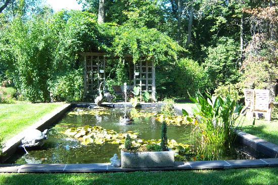 The Pennsbury Inn: The reflecting pool (complete with frogs)