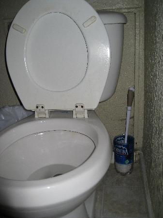 Alaska Coastal Lodging: Bathroom - check out the Aquafina scrubber holder!