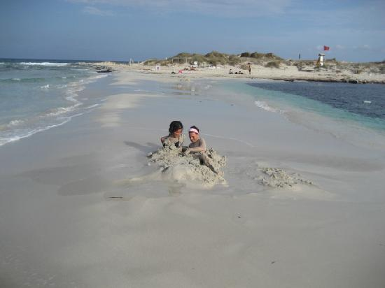 Insotel Hotel Formentera Playa: formentera