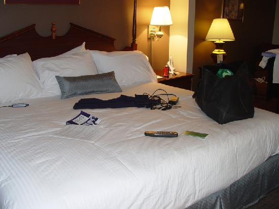 Wingate by Wyndham Oklahoma City Airport: bed area
