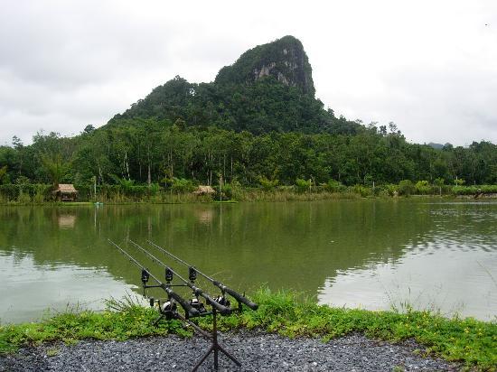 Gillhams Fishing Resorts: Scenery