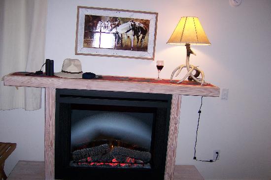 Hot Springs Inn : Fireplace