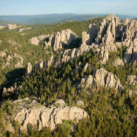 Black Hills National Forest in South Dakota