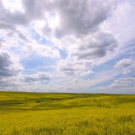 เซาท์ดาโคตา: Open Prairie in Western South Dakota