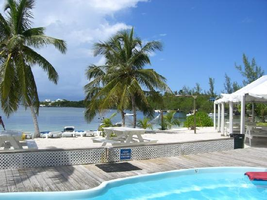 Treasure Cay Beach, Marina & Golf Resort : Grabbers ambiance