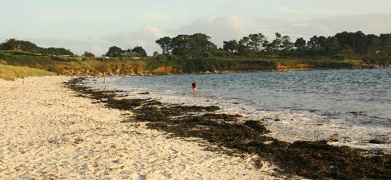 Camping Les Abers : Beautiful Beach 50 metres from site