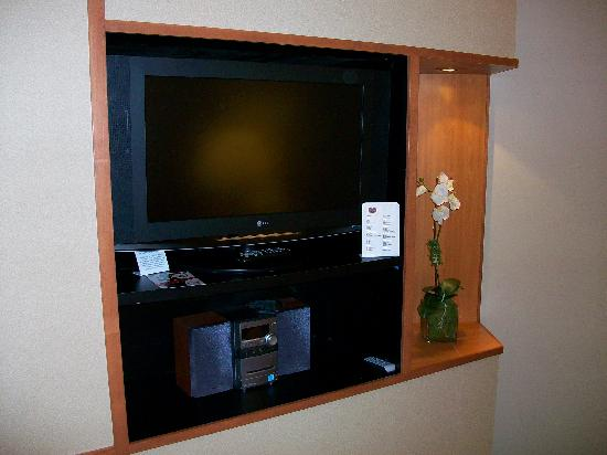 Fairfield Inn & Suites Detroit Metro Airport Romulus: HDTV