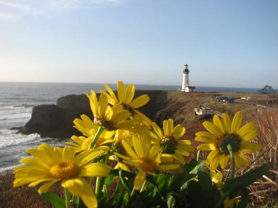 Yachats coastline: Yaquena Head Light House- North of Yachats