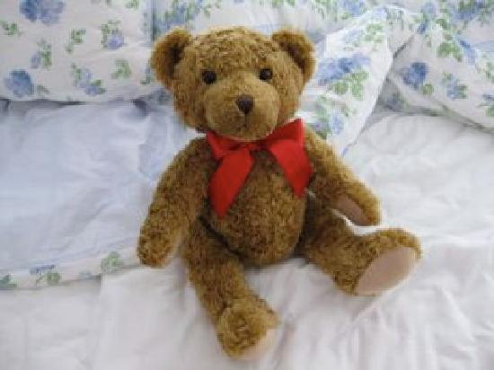 Hotel Kugel: the hotel teddy