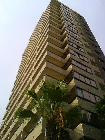 Halley Apartments Photo