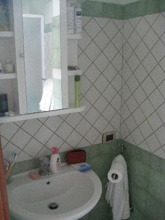 Villa Pollio: small bathroom