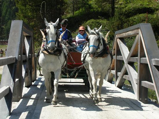 Pontresina, Switzerland: Mit der Pferdekutsche ins Val Rosegg