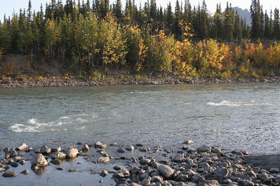 The Cabins at Denali Park Village : river view outside of cabin