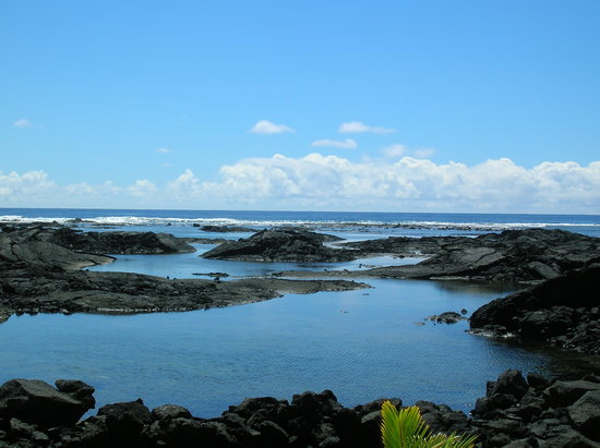 Pahoa, Гавайи: Nearby Tide Pools- Fantastic snorkeling