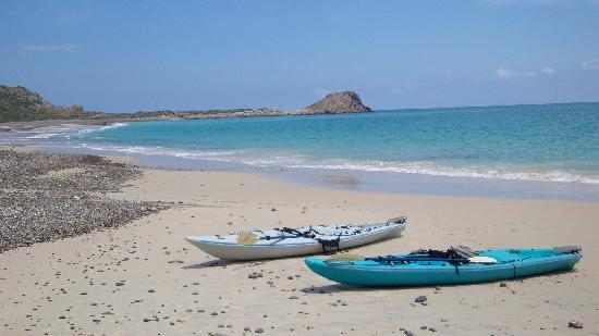 El Encanto de Cabo Pulmo: encanto kayaks on the playa
