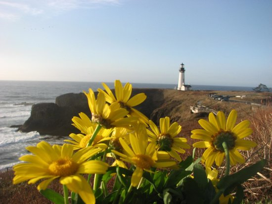 Fireside Motel: Yaquena Head Light House- 25 miles North of Fireside