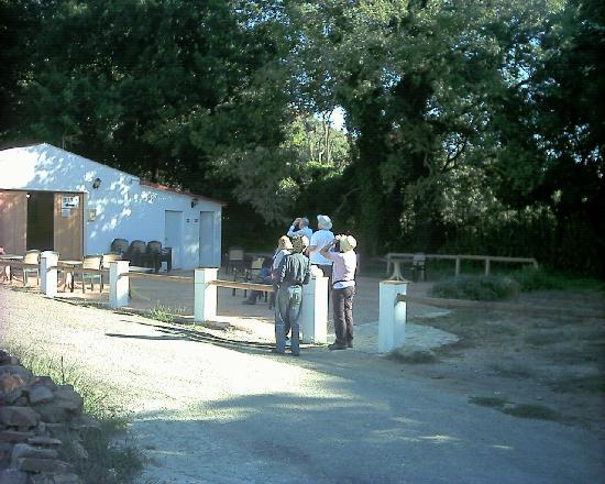 Complejo Rural Huerta Grande: Cafeteria