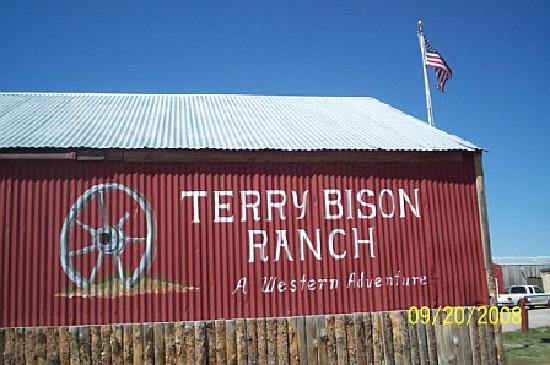 Cheyenne, WY: Terry Bison Ranch