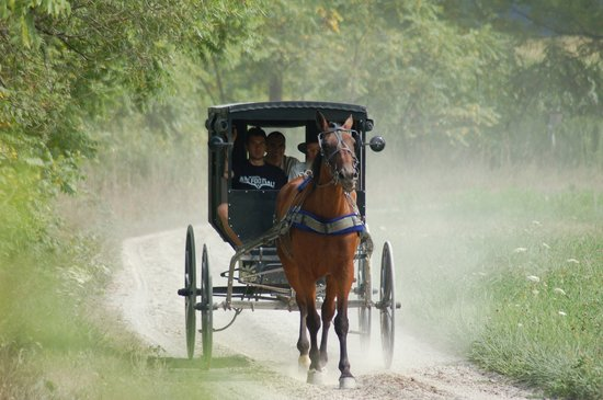 Amish Country - OHIO