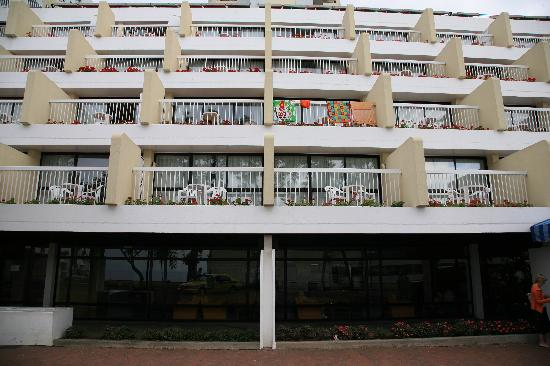 Alto Lido Hotel: Weeds In The Flower Planters!