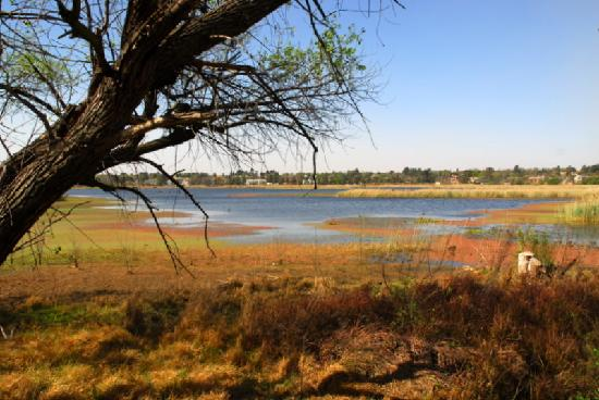 Benoni, Zuid-Afrika: A view of the bird santuary