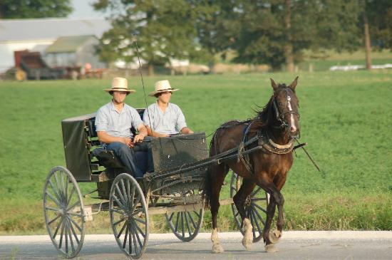 Ohio : Amish boys