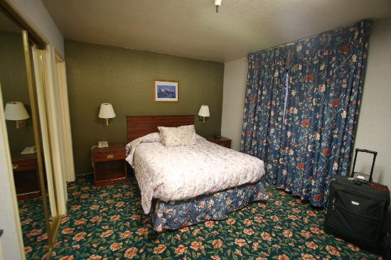 Otter Inn: room