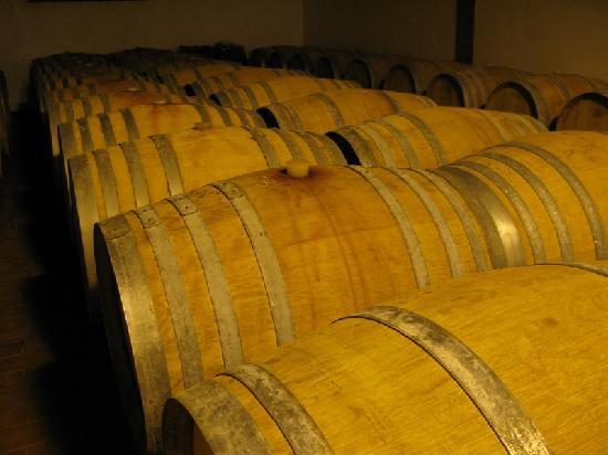 Agriturismo Marciano: wine cellar II