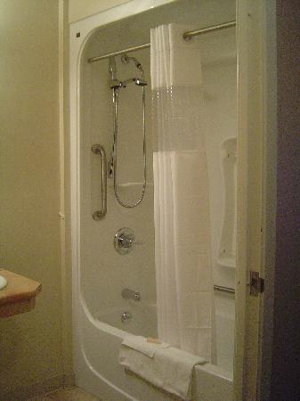 Days Inn & Suites - Thunder Bay: shower