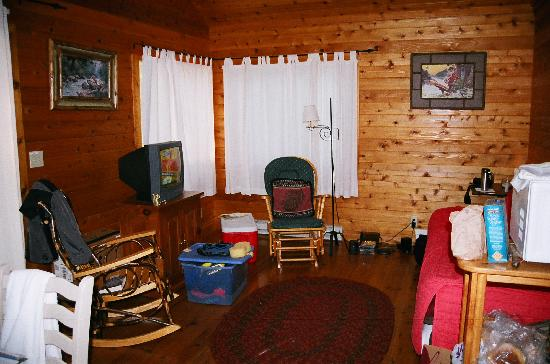 Prospect Point Cottages - Blue Mountain Lake: Living area