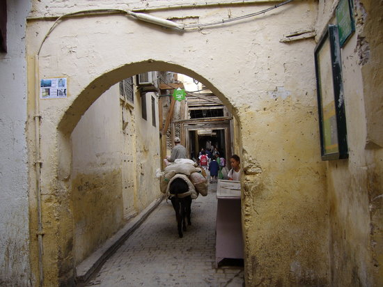 Medina of Fez: Médina 1