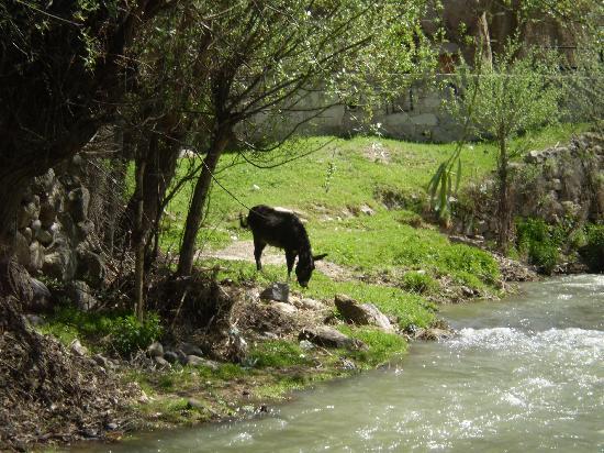 Ihlara Valley: Opposite river bank, Belisirma