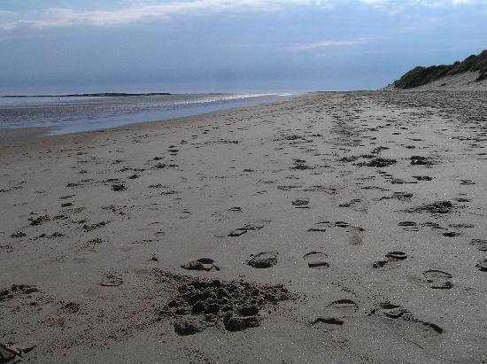 Bamburgh, UK: The morning's visitors have left their mark on the soft sands.
